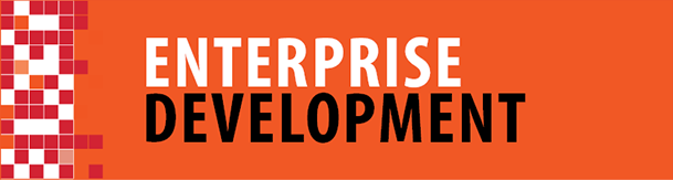 Enterprise Development [icon]